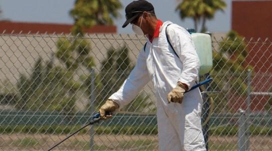 Pest Control Southeast Texas, industrial Pest Control Beaumont Tx, Aattaboy Pest Control Port Arthur, pest control Crystal Beach Tx, pest control Winnie TX, pest control Sour Lake, pest control Orange TX,