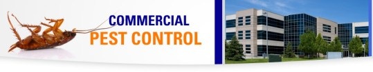 Pest Control in Beaumont Port Arthur commercial property