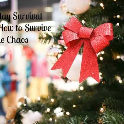 Holiday Survival Guide: How to Survive the Chaos