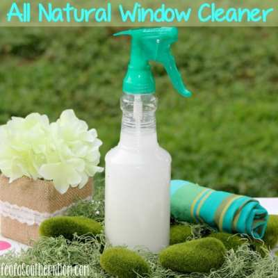 DIY: All Natural Window Cleaner