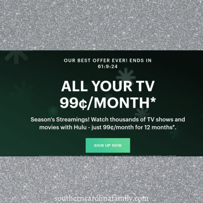 12-Month Hulu Subscription just .99¢ per month