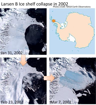 The progressive collapse of the Larsen B ice shelf in 2002