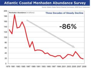 From a menhaden stock assessment by the Atlantic States Marine Fisheries Commission