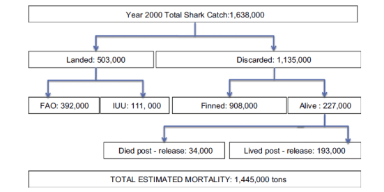 Figure 2 from Worm et al. 2013. Total mortality = total catch - those that survived being released. Numbers are in 1,000 tons. IUU= Illegal, Unreported and Unregulated
