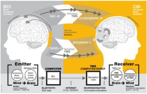 """Brain-to-brain (B2B) communication system overview. On the left, the BCI subsystem is shown schematically, including electrodes over the motor cortex and the EEG amplifier/transmitter wireless box in the cap. Motor imagery of the feet codes the bit value 0, of the hands codes bit value 1. On the right, the CBI system is illustrated, highlighting the role of coil orientation for encoding the two bit values. Communication between the BCI and CBI components is mediated by the internet."" (Photo credit: Grau et al. 2014)"
