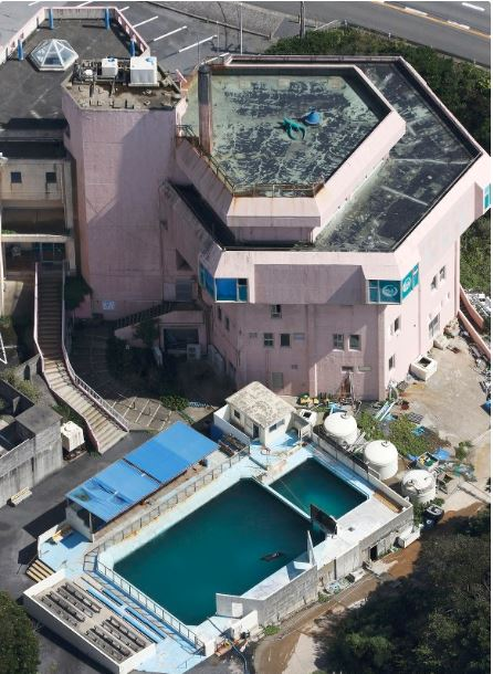 This photo taken Sept. 19, 2018, from a Kyodo News helicopter shows a pool for a bottlenose dolphin at the-defunct Inubosaki Marine Park Aquarium in Choshi, Chiba Prefecture, near Tokyo. (Kyodo)