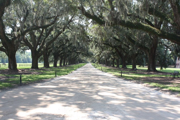 Boone Hall Plantation in Mount Pleasant, South Carolina