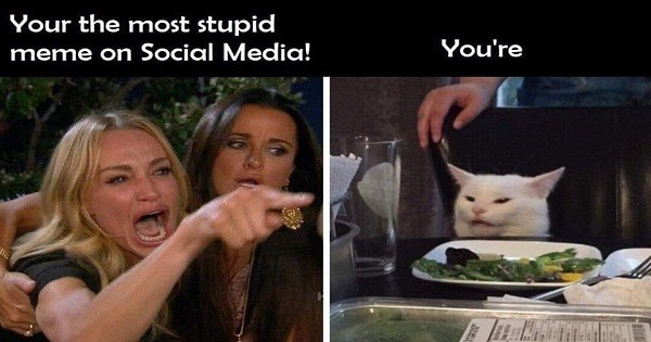 Woman Yelling At Cat Meme Takes Over The Internet The Southern