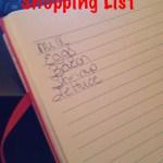 Shopping List or No Shopping List