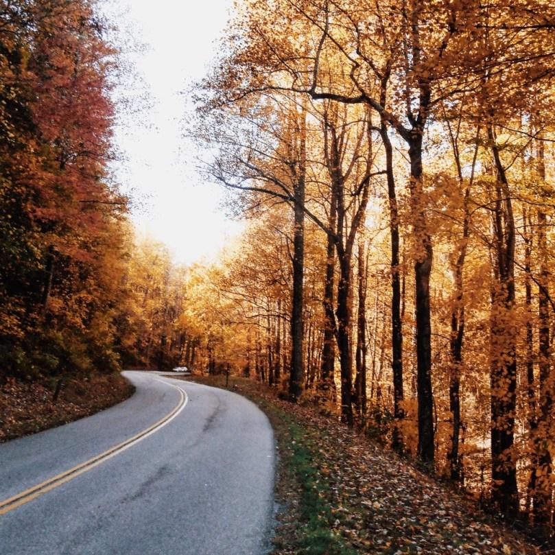 Life is full of Seasons