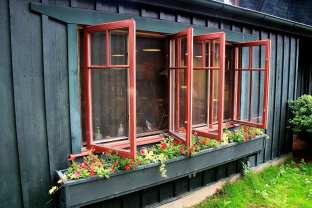 SW Kitchen Window