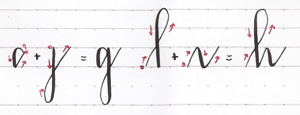 How to create letterforms with pointed pen modern calligraphy. Lowercase g, lowercase h.