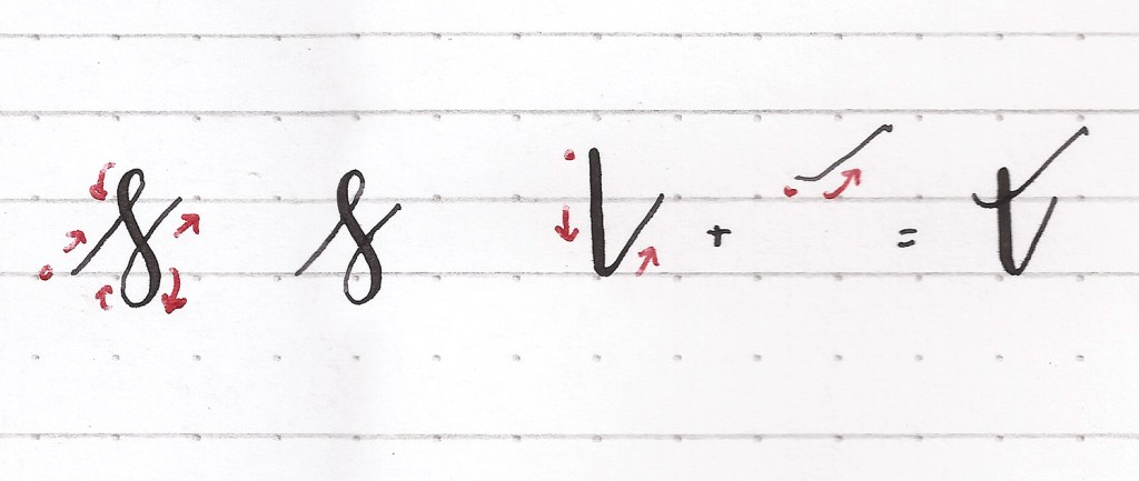 How to create letterforms with pointed pen modern calligraphy. Lowercase s, lowercase t.