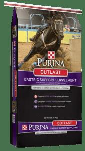 gastric discomfort in horses