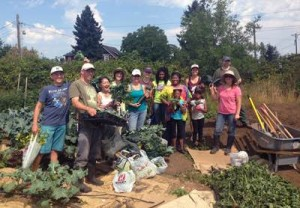 Veggie Co-op Volunteers from the 2014 season learn to farm and grow together at the Franklin Pierce High School.