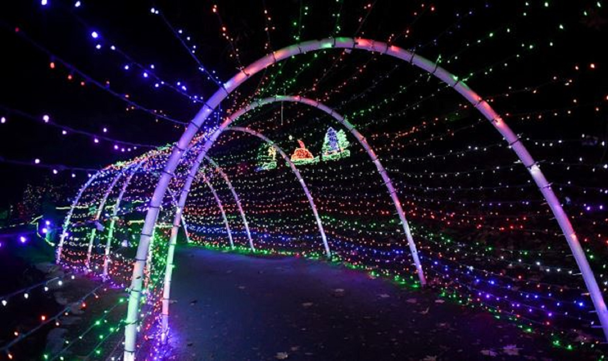 Pierce County holiday light displays