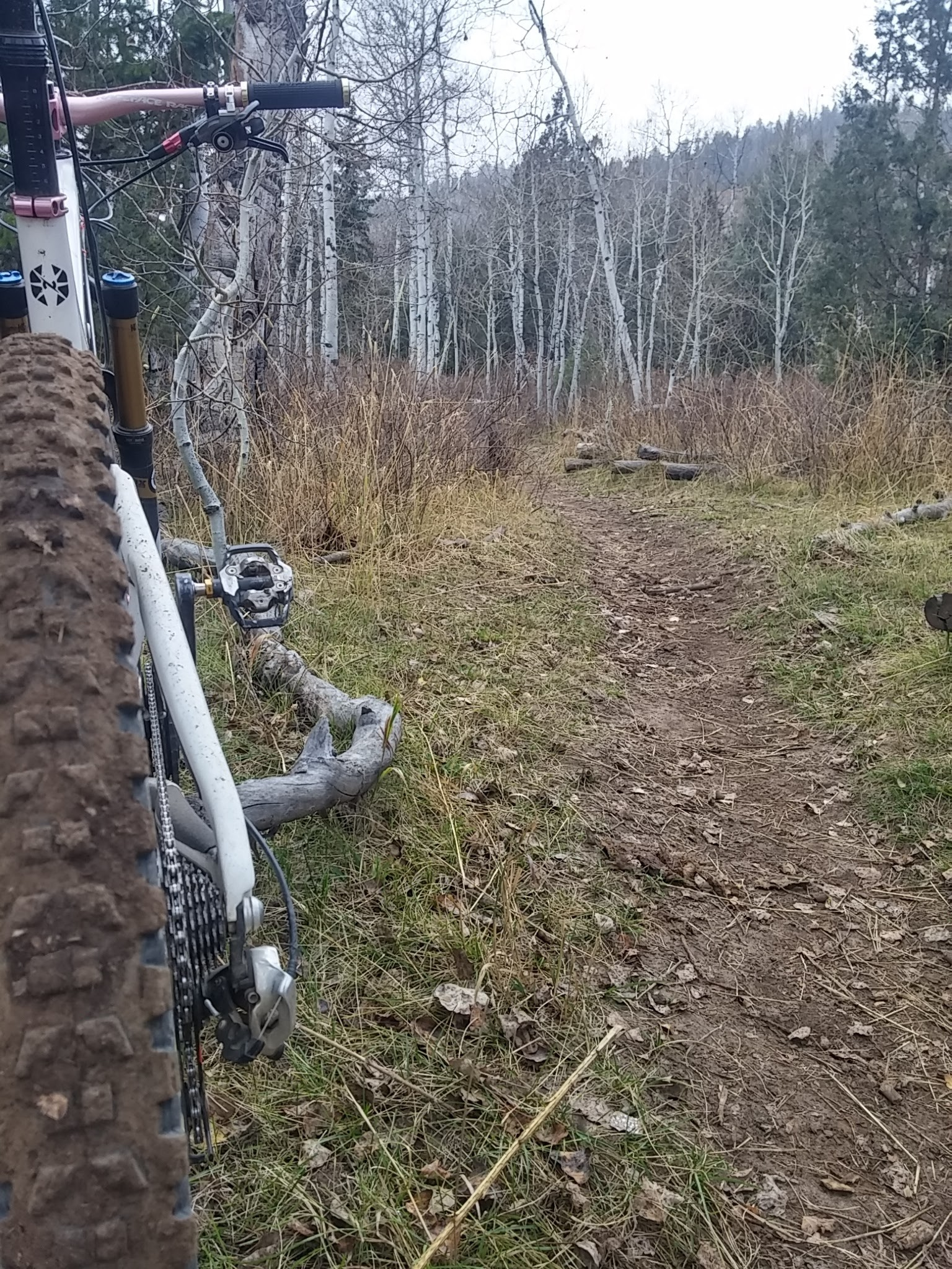 Pine Valley Trail - South Summit Trails Foundation