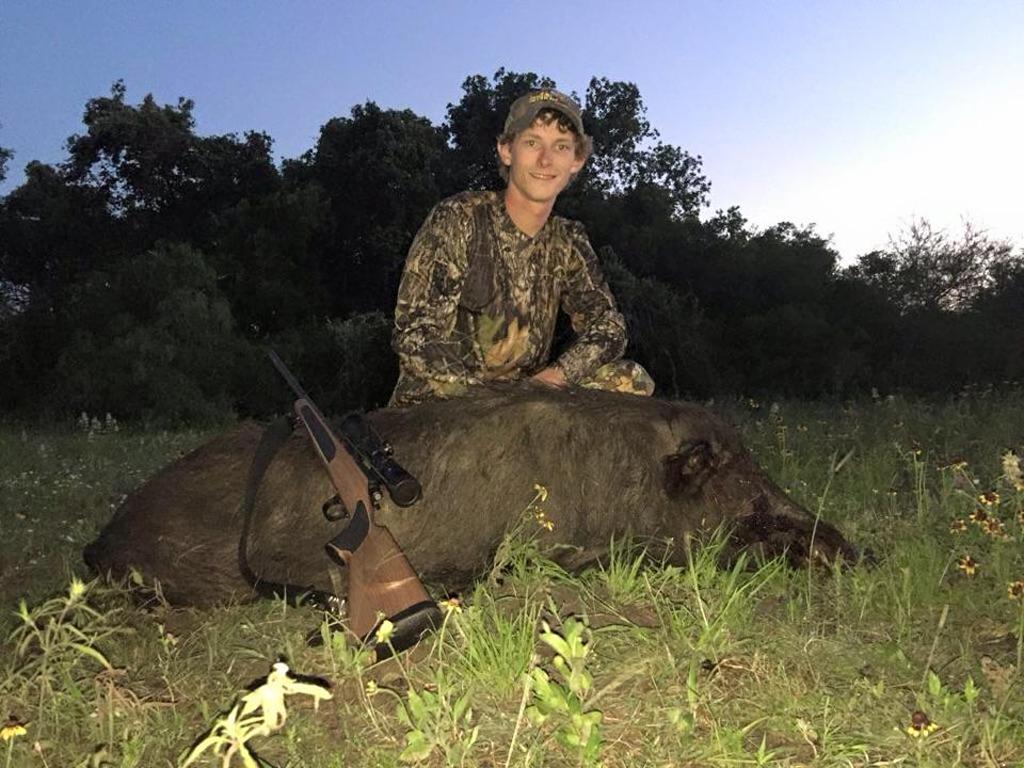 Hogs18may15-03