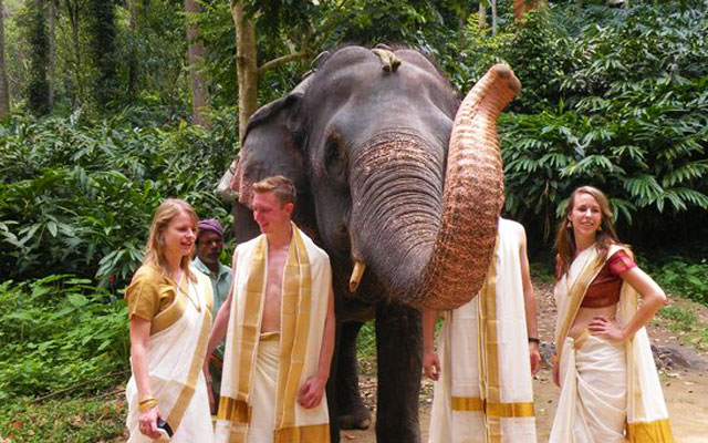 Kodanad Elephant Training Centre in Kochi, Kerala