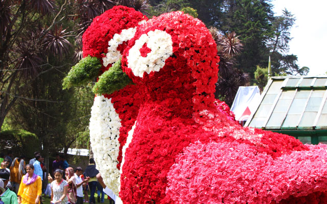 A glimpse of flower decorated bird statue in Ooty Flower Festival show in Summer