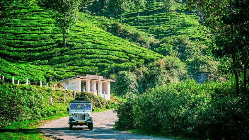 Mahindra vehicle driving amongst the tea plantations in Munnar, Kerala, India.