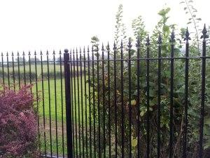 brecon-village-railings-3