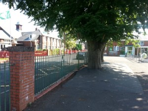 playground-ball-stop-fence-neath-3