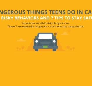 Teen Driving Risks Bk