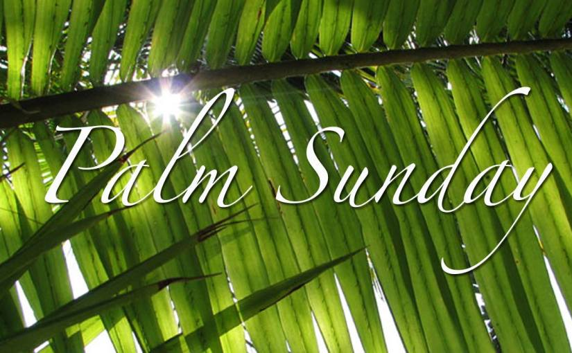 """The Words that Shape Us: From """"Hosanna"""" to """"Crucify"""""""