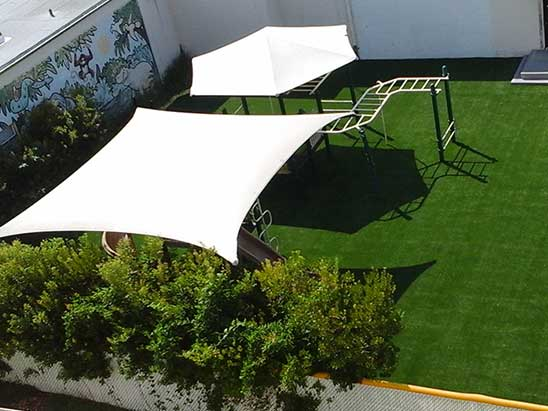 Backyard Playground Turf