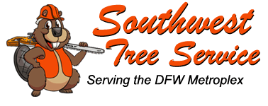 Southwest Tree Service