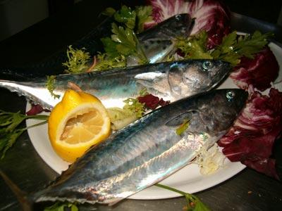 Foto piatto ricetta Tonnetti alla Calalonga