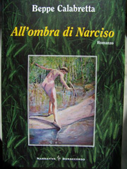 Copertina del libro All'ombra di Narciso