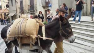 """Cardinale – Successo per la manifestazione """"Nocciola d'oro"""""""