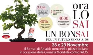 Il 28 e il 29 novembre tornano i Bonsai di ANLAIDS. Banchetti a Chiaravalle, Soverato e Guardavalle