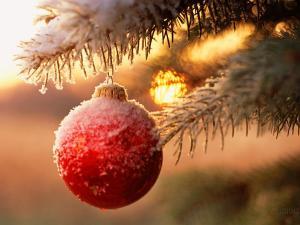 Il preside e il Natale