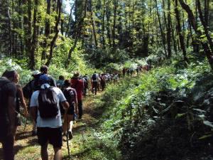 Successo per il Trekking Day promosso da Mtb Cardinale