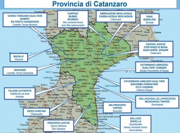 Cartina Calabria Catanzaro.La Mappa Della Ndrangheta Nella Provincia Di Catanzaro Gli