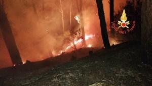 Incendio nella pineta di Siano e auto in fiamme nella notte a Catanzaro