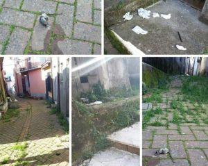 Sporcizia, incuria e topi morti lungo le vie del centro storico di Chiaravalle