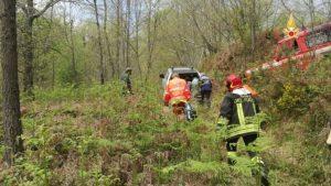 Uomo travolto dall'albero che stava tagliando, soccorso e trasportato in ospedale