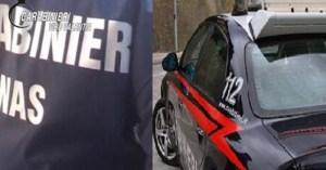Blitz dei carabinieri nei ristoranti, comminate sanzioni per 9 mila euro