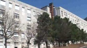 Medico puliva seppie durante orario di lavoro in ospedale, l'Asp lo licenzia