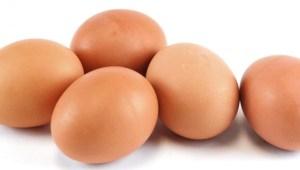 Nuovo allarme del Ministero dell Salute per la Salmonella, uova contaminate ritirate dal mercato