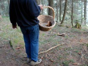 Si perde mentre cerca funghi, 77enne trovato morto