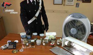 Soverato – Coltivava e spacciava stupefacenti in casa, 40enne arrestato