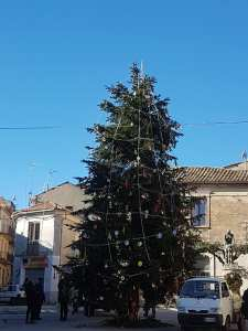 "A Girifalco ""Addobbiamo l'albero insieme"""