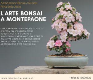 Protocollo d'intesa Comune di Montepaone e Associazione Bonsai e Suiseki Perla dello Jonio