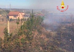 In fiamme macchia mediterranea vicino centro abitato a Girifalco