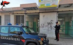 Gattino ucciso a bastonate a scuola in presenza di scolari, deferito il bidello